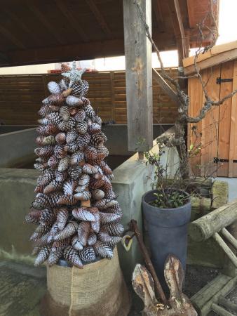 Déco de Noël à l'entrée ! - Picture of Chai Bertrand, Cap-Ferret ...