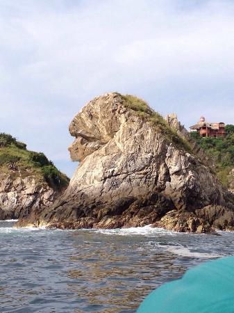 La Cabaña de Puerto Angel: Salida Bahía de Puerto Ángel
