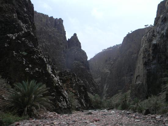Wadi Dirhur Canyon: Dirhur Canyon