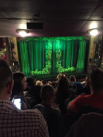 Palace Theatre: Shrek from the Circle