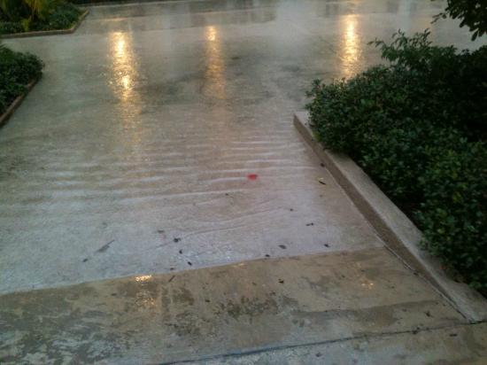 La Quinta Inn Clearwater Central: Courtyard flooding