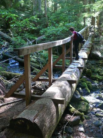 Strathcona Provincial Park: Crest Mountain Trail Natural Bridge