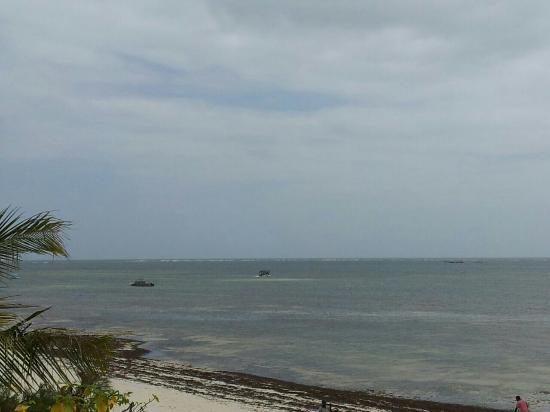 Stephanie Ocean Resort: Spiaggia del parco marino