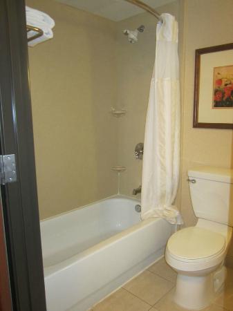 Hilton Garden Inn Las Vegas/Henderson: Shower