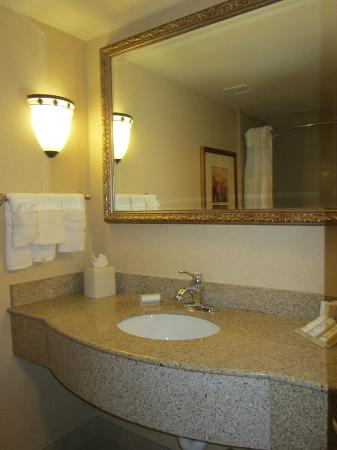 Hilton Garden Inn Las Vegas/Henderson: Sink
