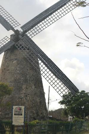 Morgan Lewis Mill: Moinho