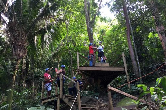 Bocawina Adventures & EcoTours Ltd.: Typical Platform