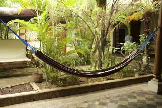 Hostel Oasis: Hamock