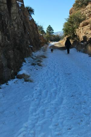 Prescott Peavine National Recreation Trail : A cool trail