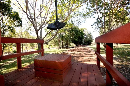 Lilyponds Holiday Park Mapleton : Flying Fox in Park