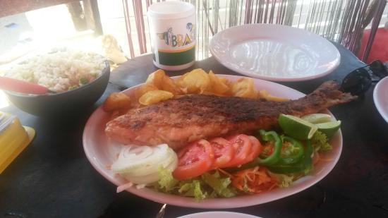 Porto Barracuda: Ótimo prato escolhido: Peixe inteiro