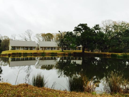 Greenwood Plantation : View of pond and accommodations