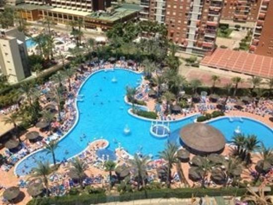 View in day is the pool from tv series benidorm picture for Pool show tv