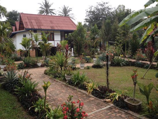 Pha Xang Resort : Pretty garden