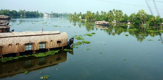 Musafir Day Tours: View on Back Waters