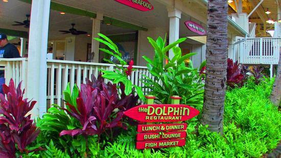 The Dolphin : Outdoor dining