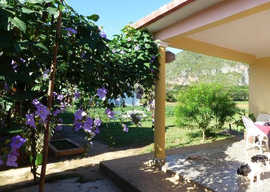 Cabana Manzana: One of the terasses