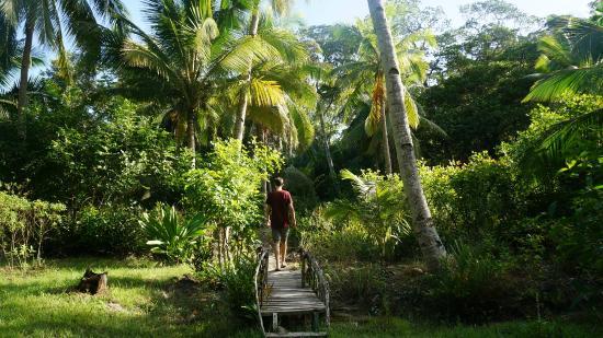 Palawan Mangrove Resort : De tuin van Mangrove Resort