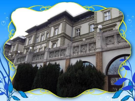 Danubius Grand Hotel Margitsziget: La façade typique