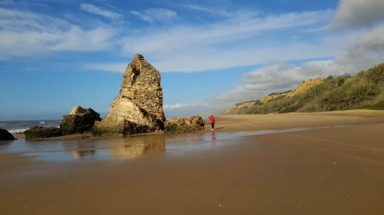 Camping Doñana Playa: Detalle de la Playa