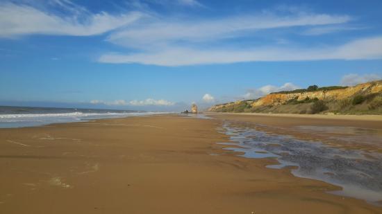 Camping Doñana Playa: Vista de la playa