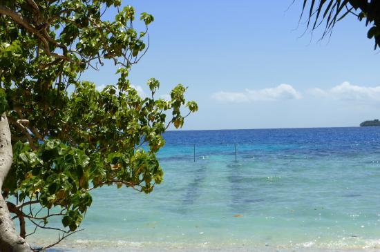 Oyster Island Resort 사진
