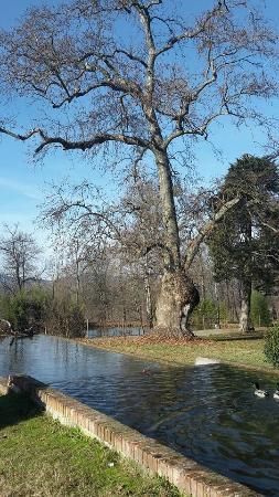 Villa Scati: il parco
