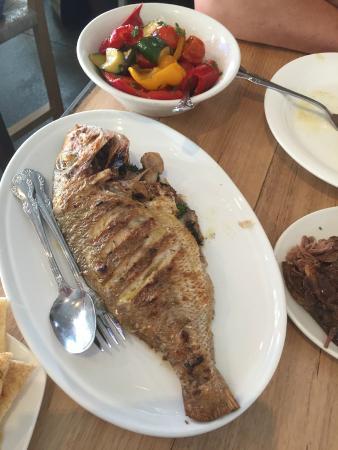 Hellenic Republic Brunswick: fish