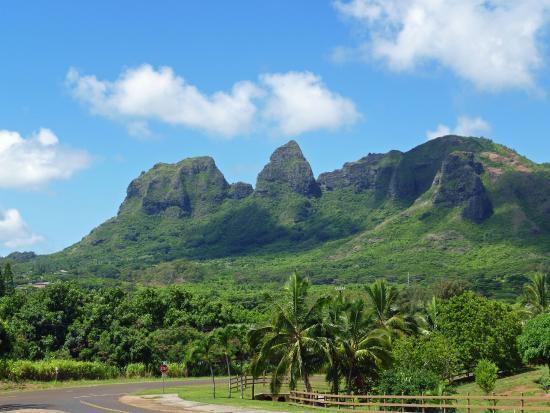 Hawaii Movie Tours: Stunning views