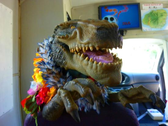 Hawaii Movie Tours: Approaching Jurassic Park