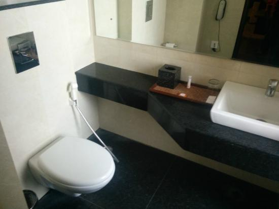 Hive Alwar: Washroom