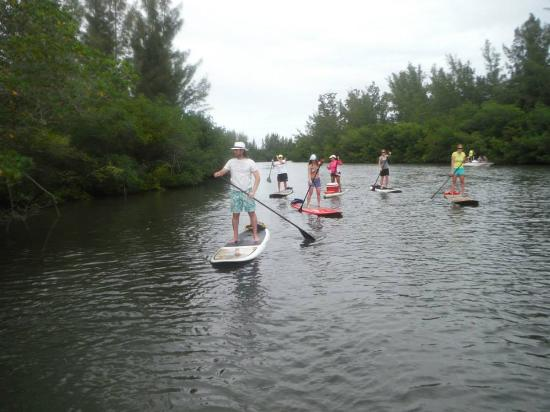 SUP Eco Adventures: Paddleboarding Jan. 3, 2015