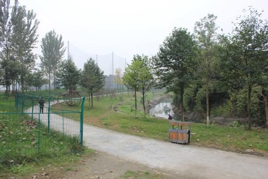 Lianghe City Forest Park