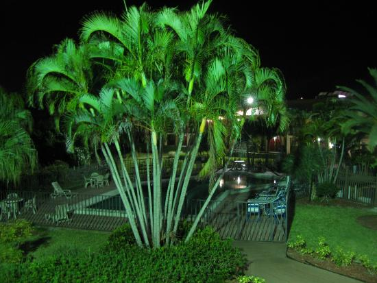 Red Roof Inn Fort Myers: pool at night