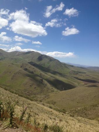 Estancia Rancho 'e Cuero: The drive in