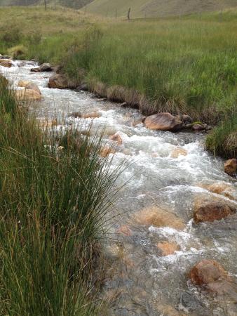 Estancia Rancho 'e Cuero: Fishing creek