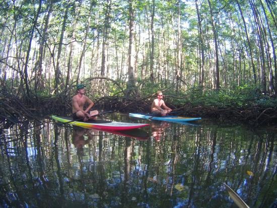 Pineapple Tours: boys taking a break