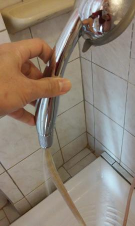 Hotel Neos Olympos: faulty shower head. Water comes out from both ends.