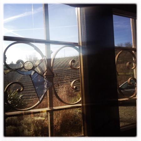 Good morning beautiful day at Casa Isabella...