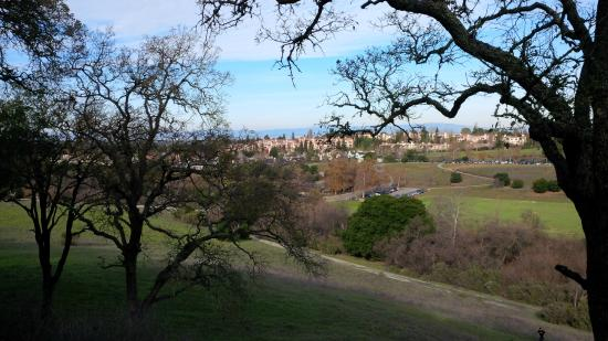 Los Altos Hills, Californien: bird's-eye view of the park