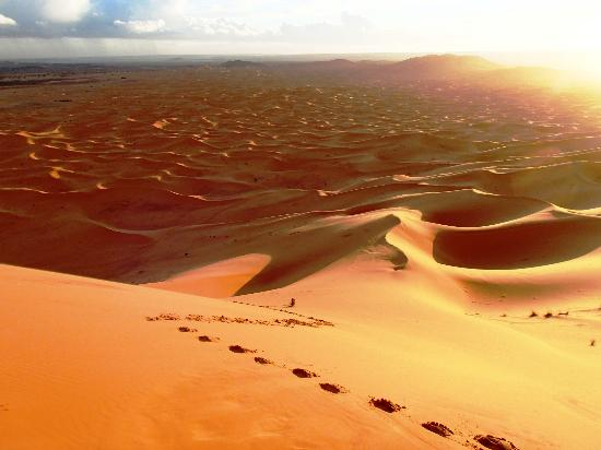 Dar Tafouyte: The view from the top of the dune