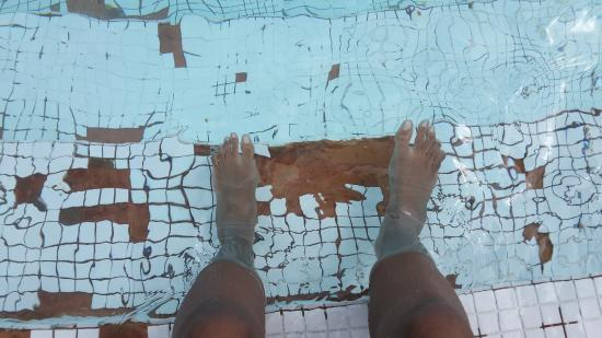 Cascadia Hotel & Conference Center: pool with missing tiles
