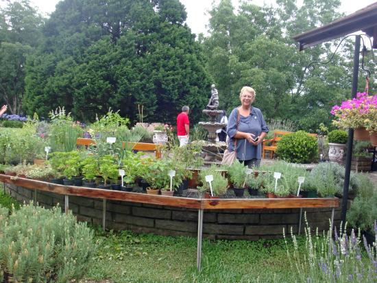 Foto de le jardin parque de lavanda gramado canteiros for Jardines de lavanda