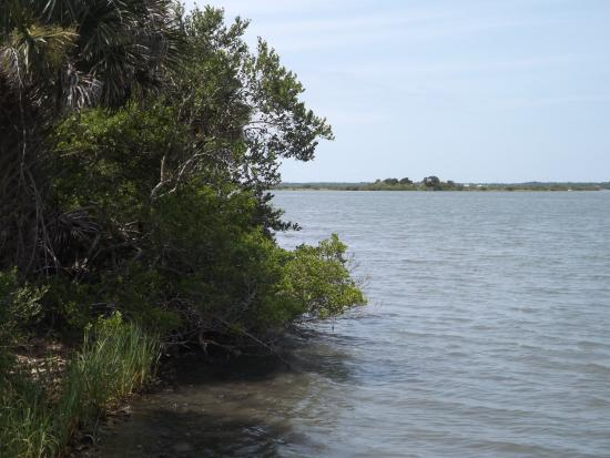 Turtle Mound National Historic Site: Around Mosquito Lagoon 2