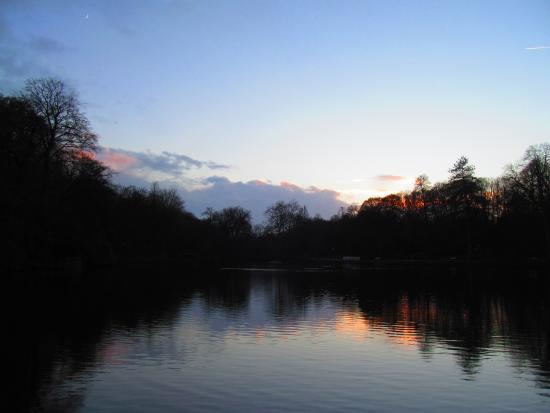 Botanischer Garten Rombergpark: Abendstimmung am See