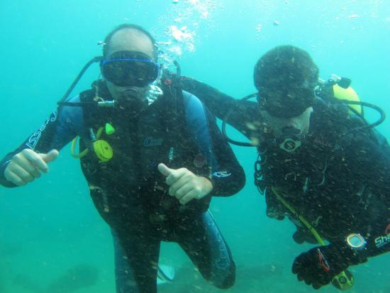 Shark Dive Centro de Mergulho