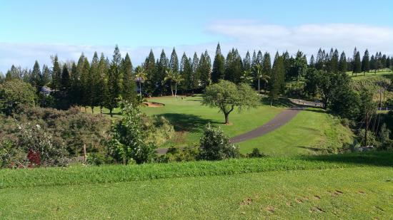 Pukalani Country Club: Course View