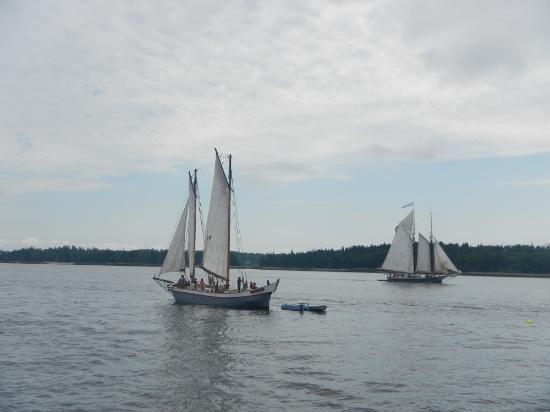 Rockland Sailing Co.: スクーナー1