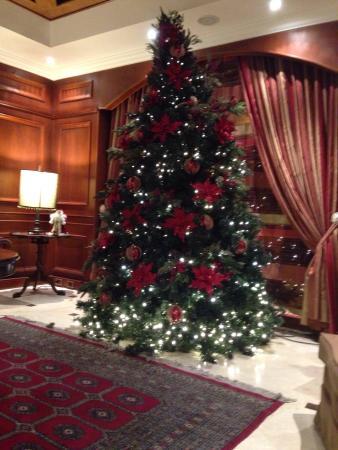 Park 10 Hotel: Navidad Park10