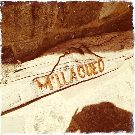 Millaqueo Luxury Villa: Details